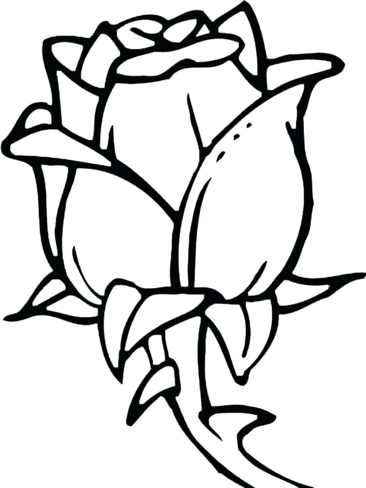 750x1000 Coloring Pages For Year Olds Drawing For Year Coloring Pages
