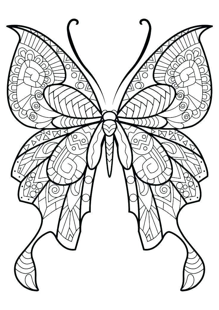 736x1040 Butterfly Coloring Pages Easy Coloring Pages Printable Princess