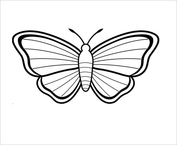 585x482 Butterfly Templates