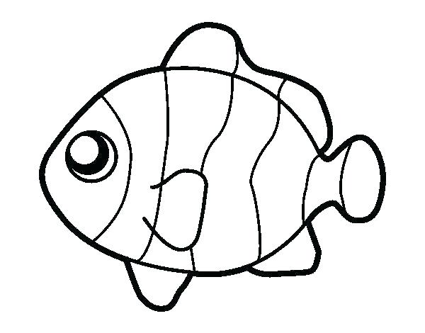 600x470 Fish Colouring Pages Free Printable Seven Days Of Creation