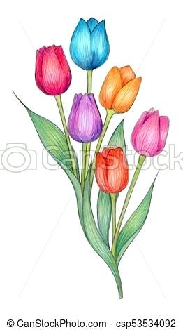 262x470 tulips drawings tulips tulip line drawing abstract