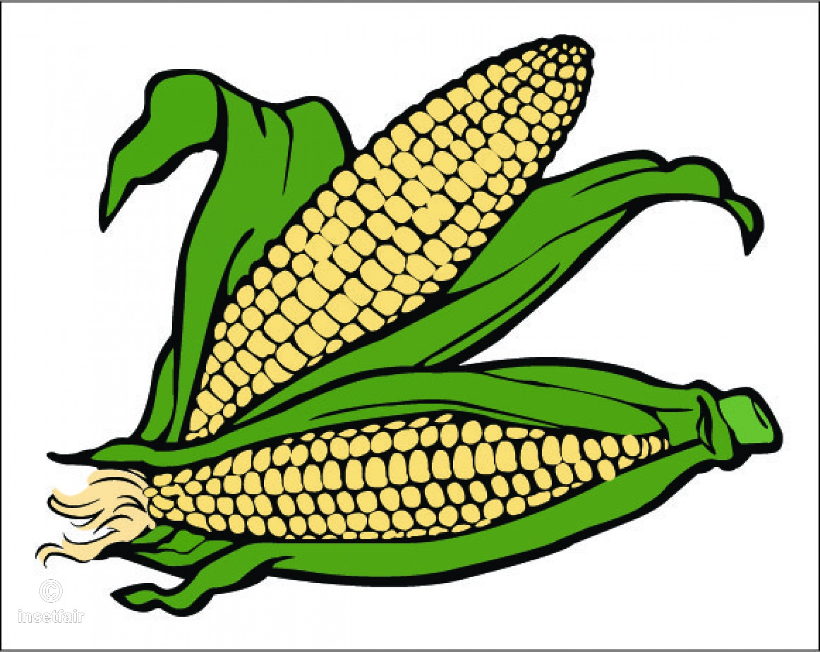 1600x1273 Corn Cartoon Clipart Drawing With Adobe Illustrator