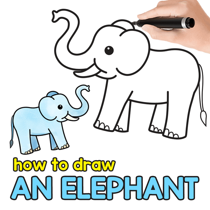 700x700 How To Draw An Elephant