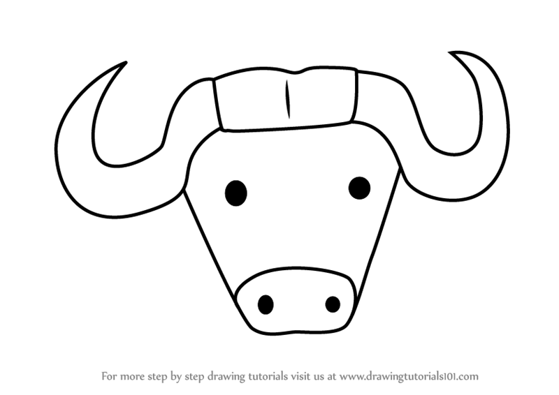 800x566 Learn How To Draw An African Buffalo Face For Kids