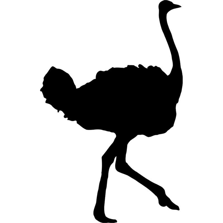 736x736 South African Animal Silhouette