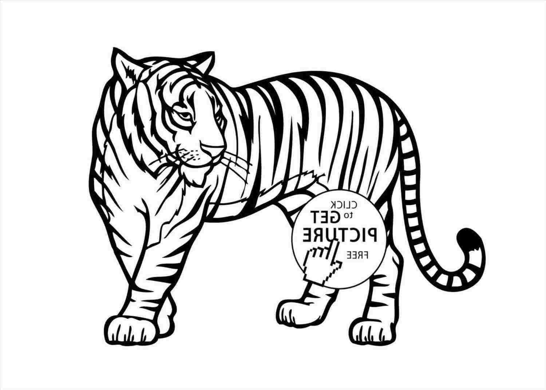 1500x1070 African Animal Drawings Easy