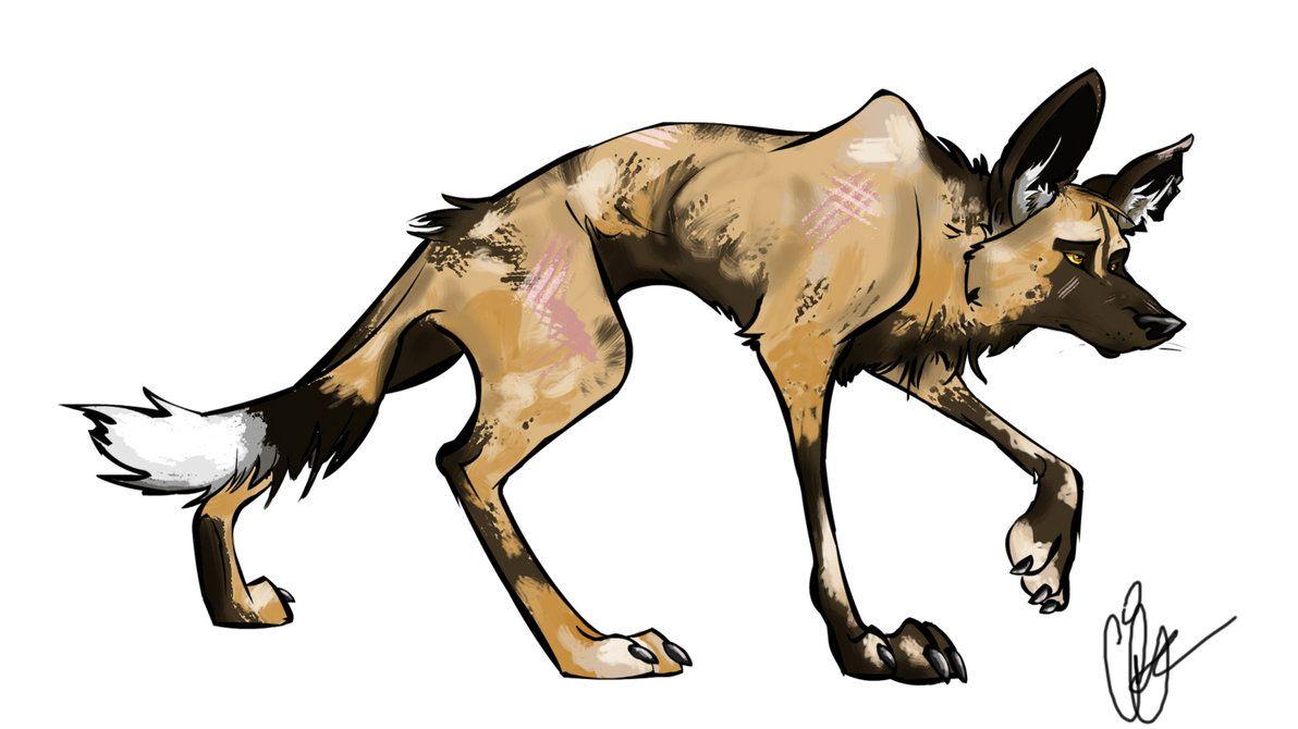 1192x670 African Wild Dog