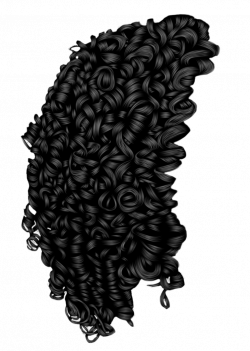 250x351 Curls Drawing Spiral Curl, Picture