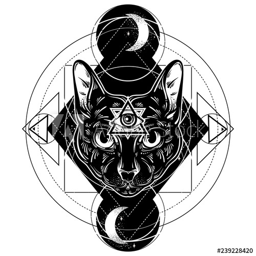 500x500 Vector Hand Drawn Ilustration Of Cat All Seeing Eye Pyramid