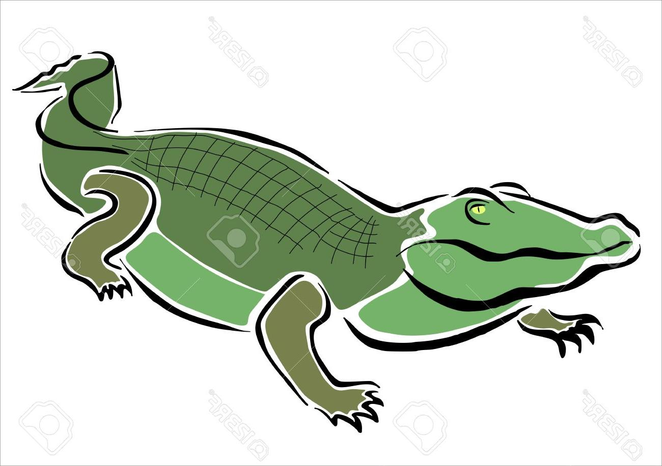 1300x916 Best Hd Crocodile Drawing Vector Drawing Free Vector Art, Images