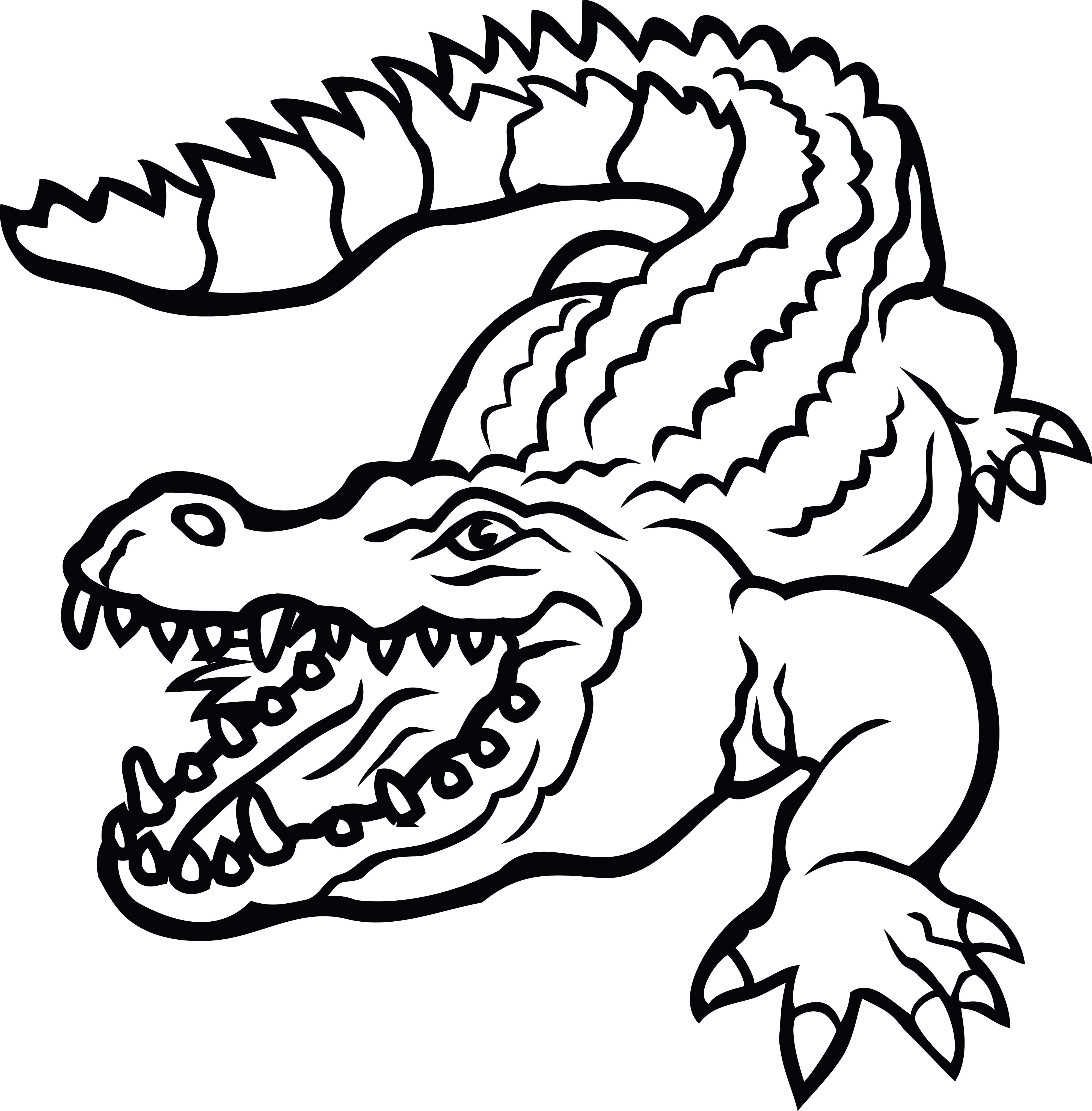 4000x4072 Collection Of Free Alligator Drawing Step By Download On Ui Ex