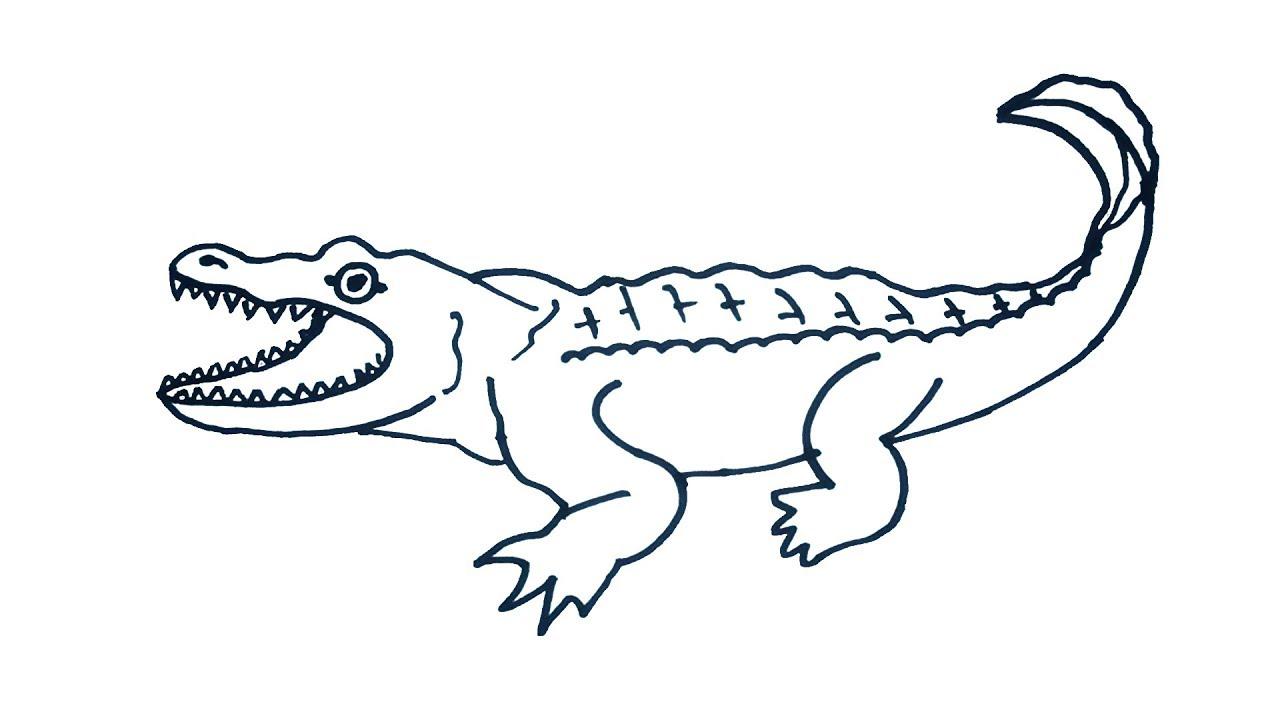 1280x720 Crocodile Drawing How To Draw Crocodile Easy Step