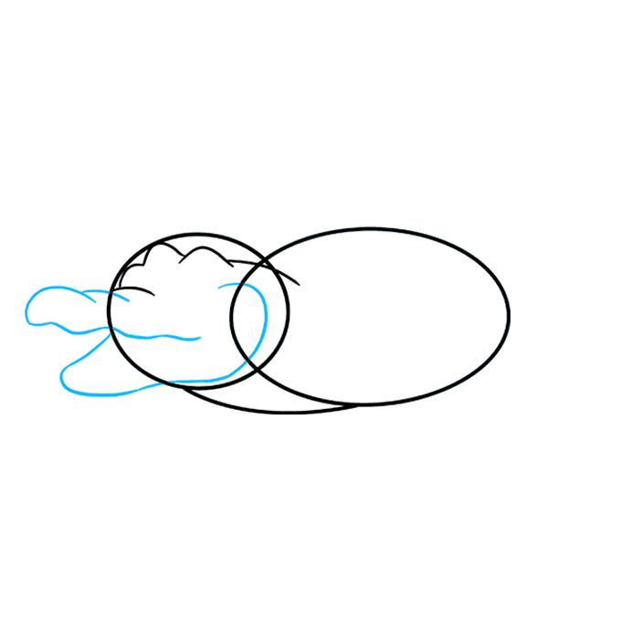 680x678 How To Draw An Alligator