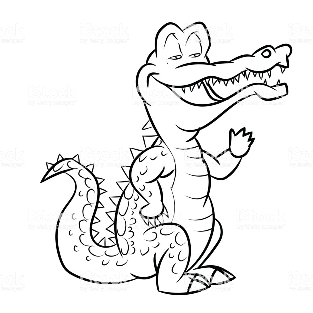 1024x1024 Huge Collection Of 'alligator Line Drawing' Download More Than