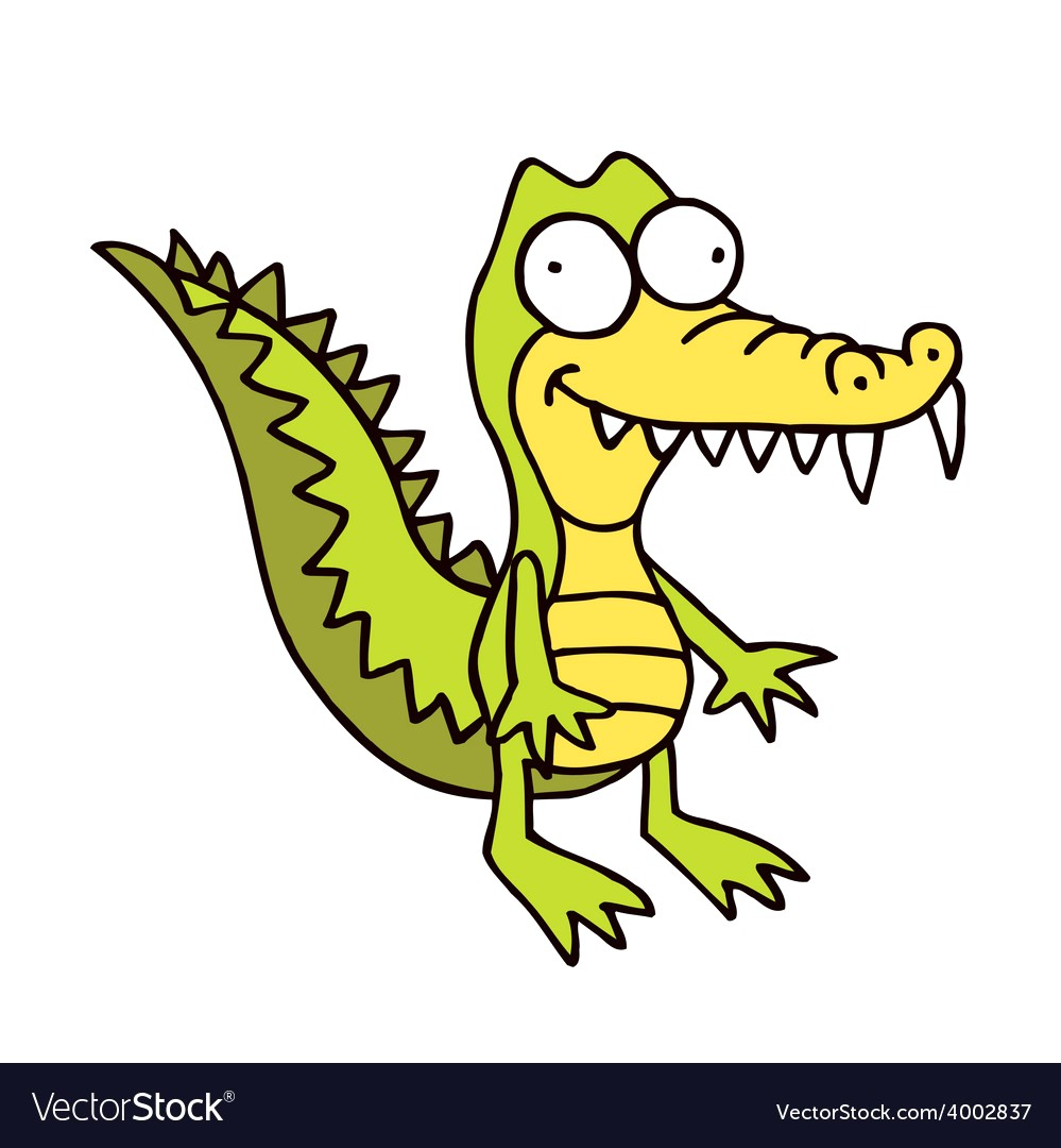 999x1080 Alligator Cartoon Drawing Pictures