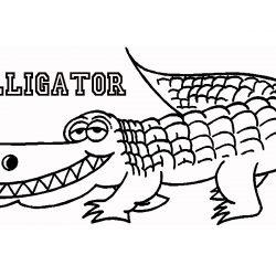 250x250 Alligator Drawing Easy Pics Clip Cad Simple Cartoon Step