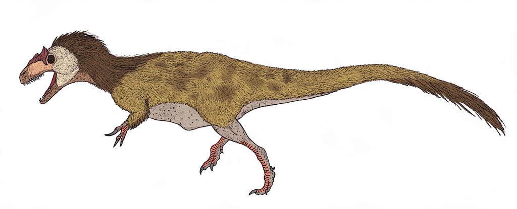 1024x415 allosaurus fragilis