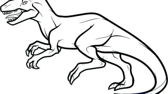 585x329 allosaurus lineart