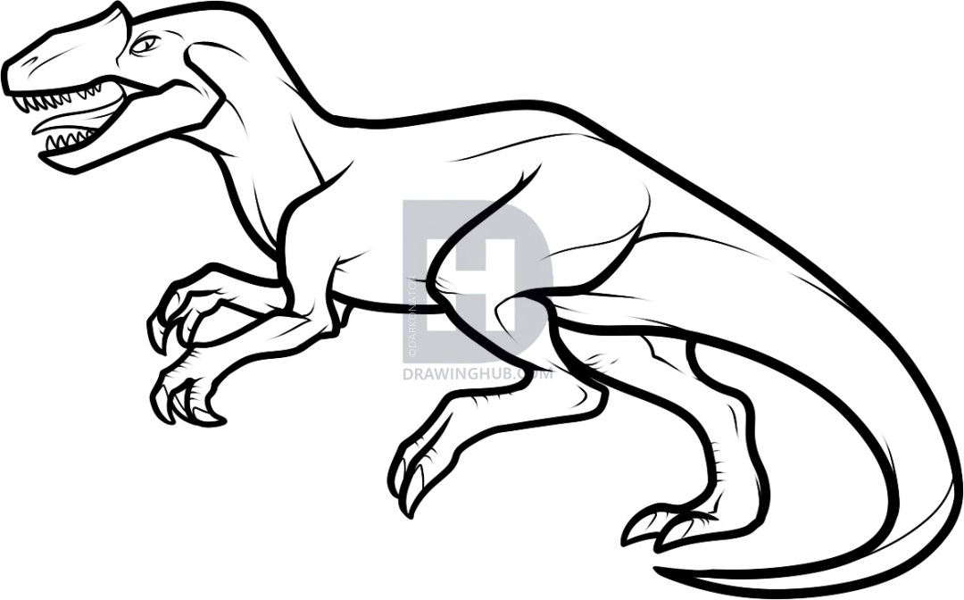 1080x672 how to draw an allosaurus, step
