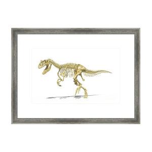300x300 allosaurus dinosaur on white background framed print