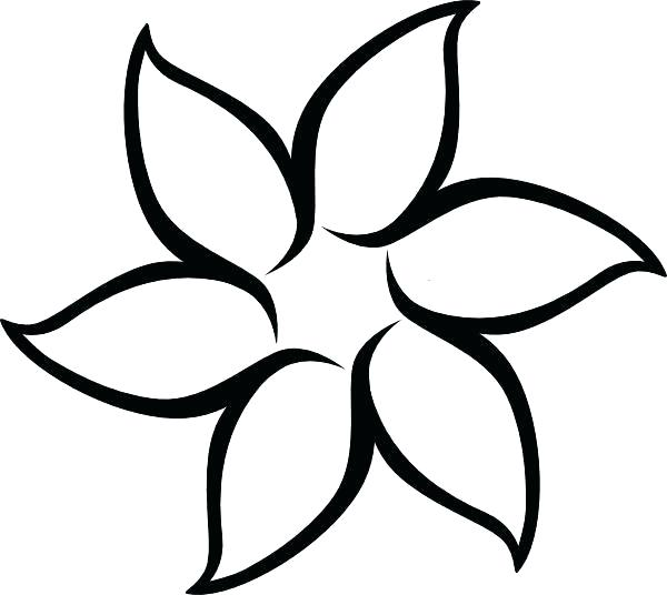 600x536 Flowers To Draw For Beginners Flower To Draw Easy Simple Drawing