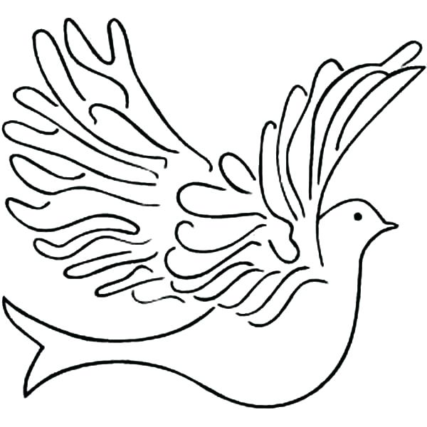 600x600 How To Draw An Easy Dove How To Draw A Dove Dove Drawing Draw Easy