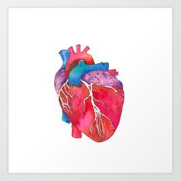 264x264 Anatomical Heart Art Prints