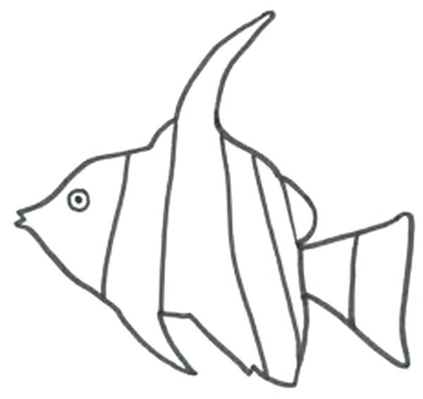 600x566 Angelfish Drawing Angelfish Drawing Images