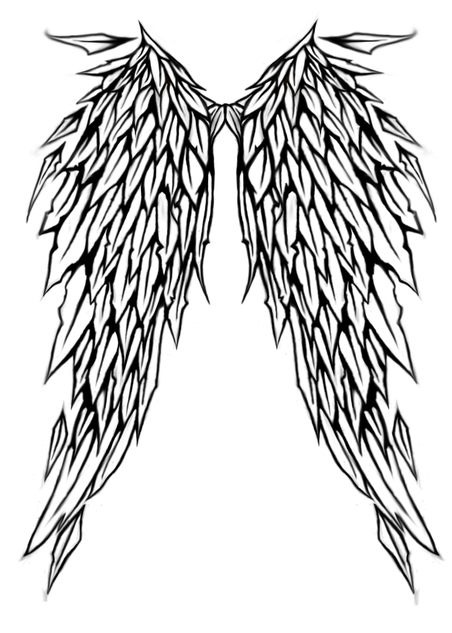 900x1259 wing outline png free wing outline transparent images