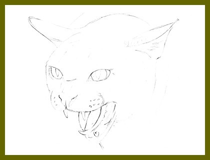 420x320 Images Of Angry Cat Drawing