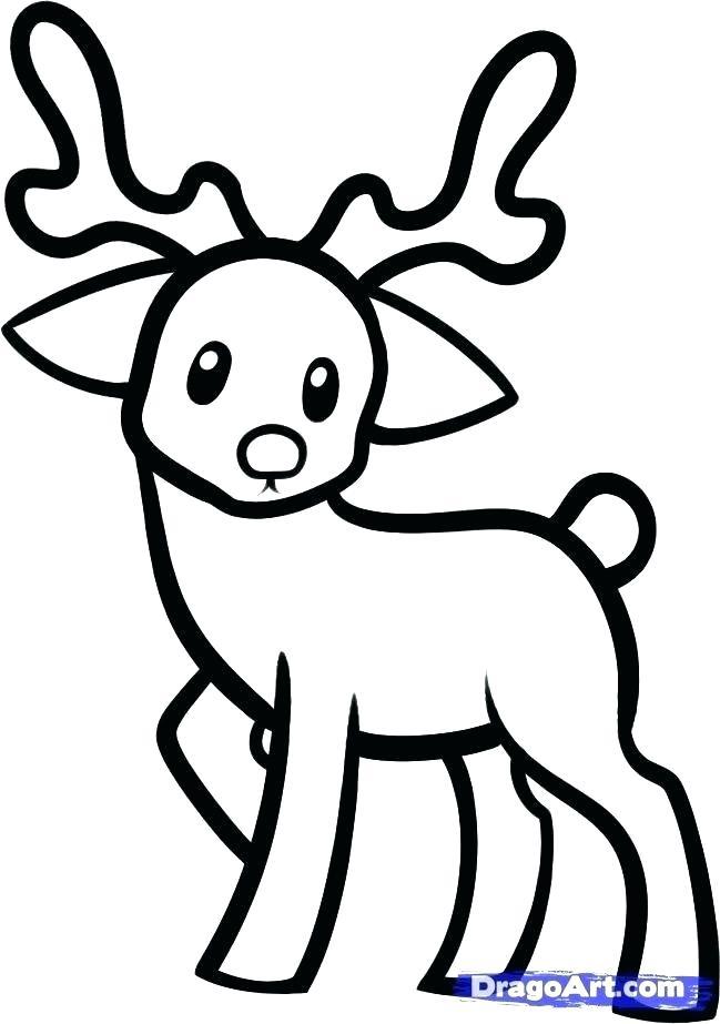 649x923 draw cute animals cartoon animals drawing draw so cute animals