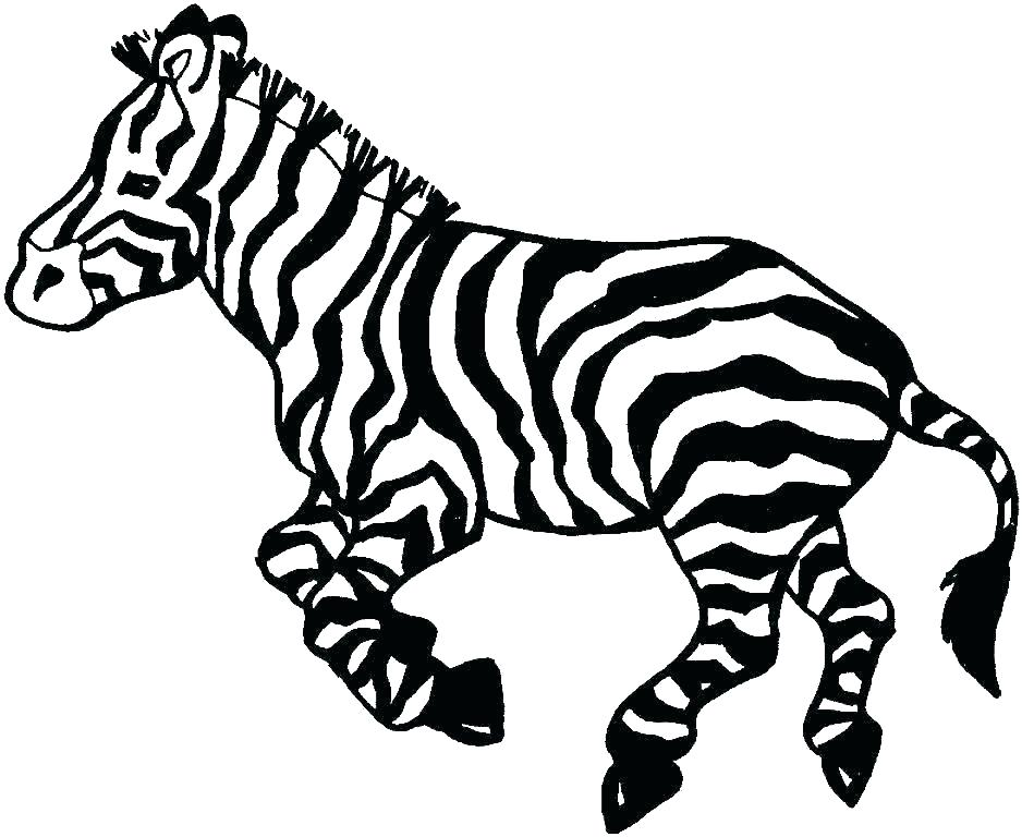 938x768 zebra pictures to print zebra print coloring pages zebra coloring