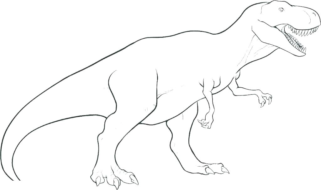 1024x609 Dinosaur Bones Coloring Pages Skeleton Human Book Colouring