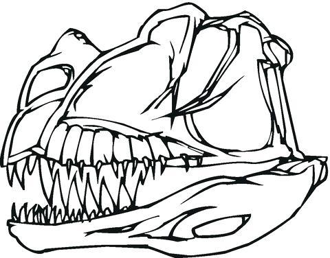 480x376 Dinosaur Skeleton Coloring Pages Dinosaur Bones Coloring