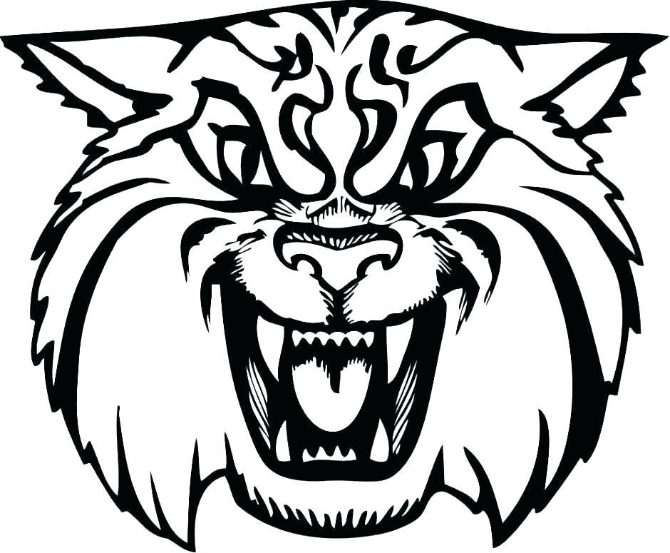 940x775 wildcat drawings wildcat wildcat anime drawings