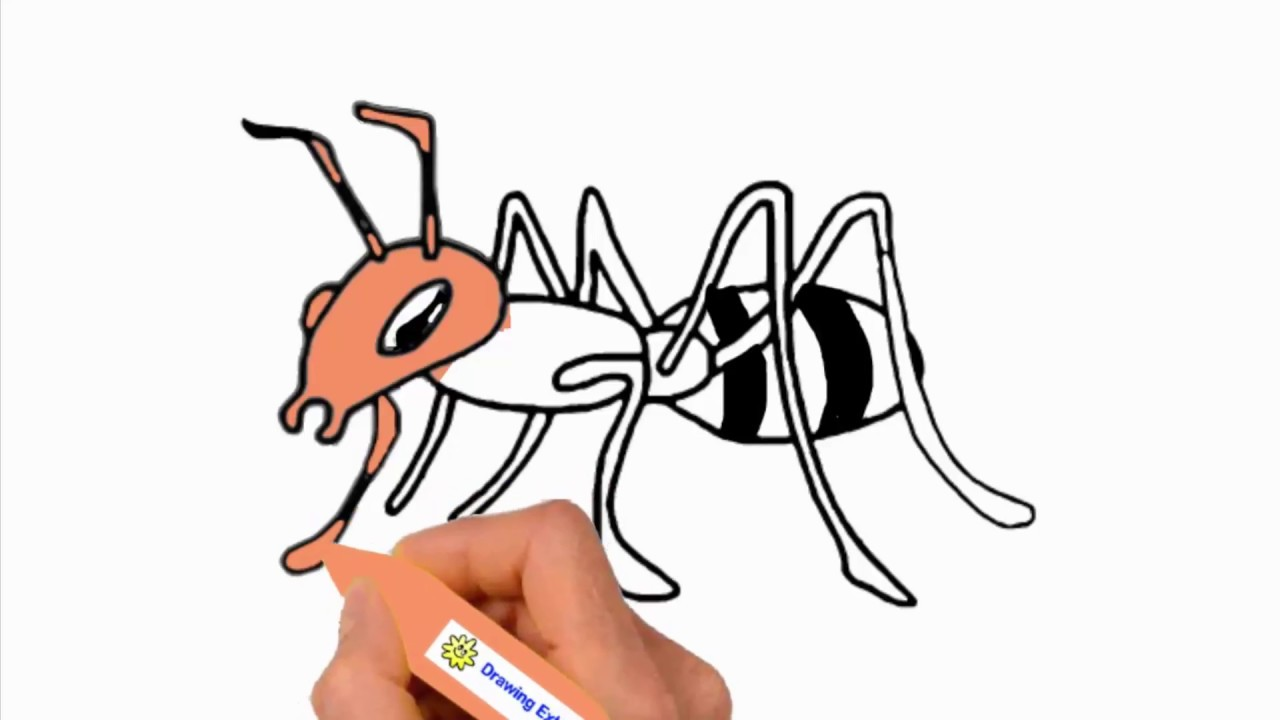1280x720 ant drawing how to draw an ant for kids ant drawing lesson step