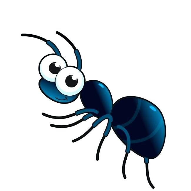 650x651 Drawings Of Ants Free Printable Pictures Of Ants For Kids Coloring