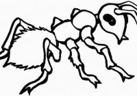 200x140 Free Printable Ant Coloring Pages For Kids For Ant Coloring