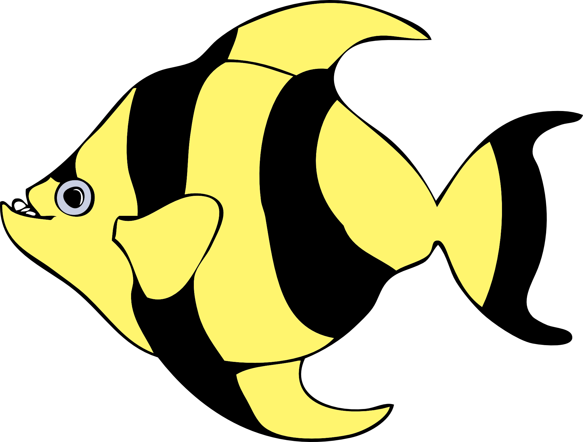 1979x1501 Collection Of Free Angelfish Drawing Pet Fish Download On Ui Ex
