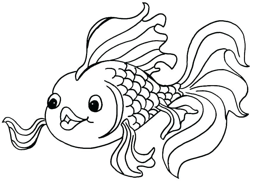 850x618 Coloring Pages For Fish Free Coloring Pages Of Fish Fish Coloring