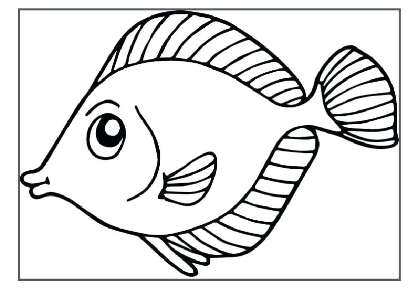 845x592 Fish Tank Coloring Pages Drawing