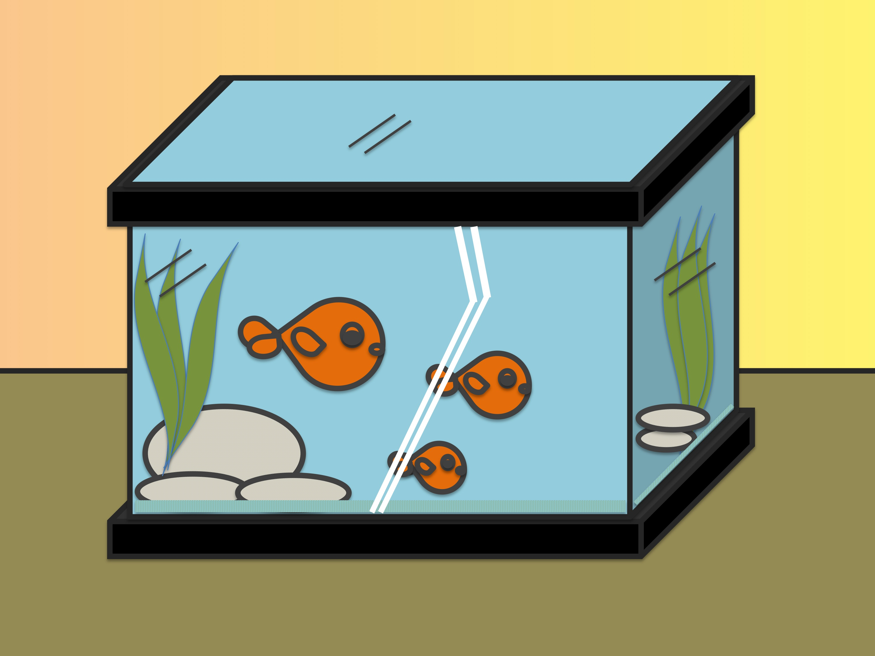 2998x2248 How To Draw Fish In A Fish Tank Steps