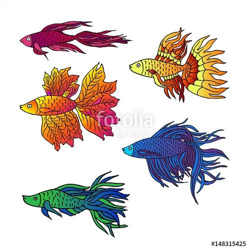 500x500 Set Of Beautiful Hand Drawn Aquarium Fish River Fish Sea Fish