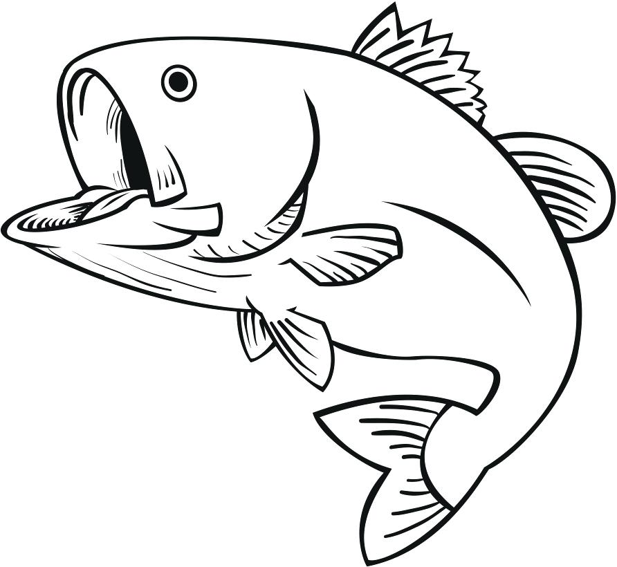 892x820 Simple Fish To Draw Aquarium Fish Image Gallery Learn How To Draw