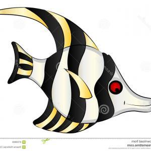 300x300 Stock Illustration Barb Aquarium Fish Illustration Clip Art Vector