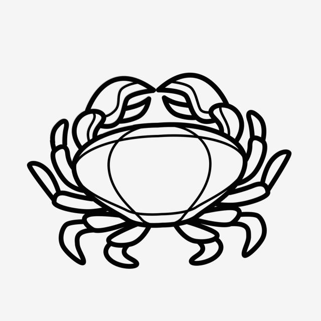 640x640 marine life crab aquatic animal crab, doodle crab, black and white
