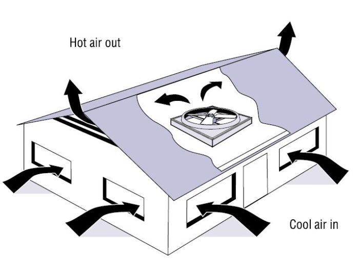 700x533 Fans In The Attic Do They Help Or Do They Hurt
