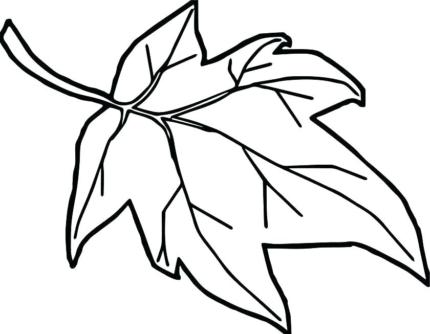 840x653 coloring pages of fall leaves autumn leaves coloring pages autumn