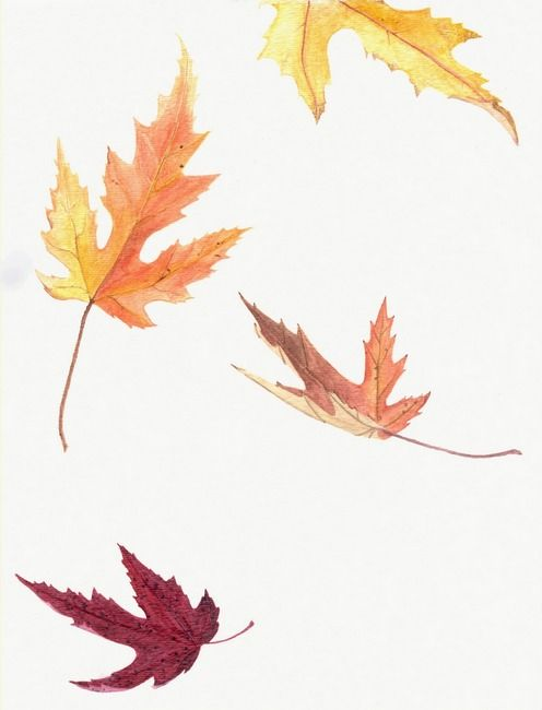 496x650 falling leaves skin art fall leaves drawing, leaves, painted