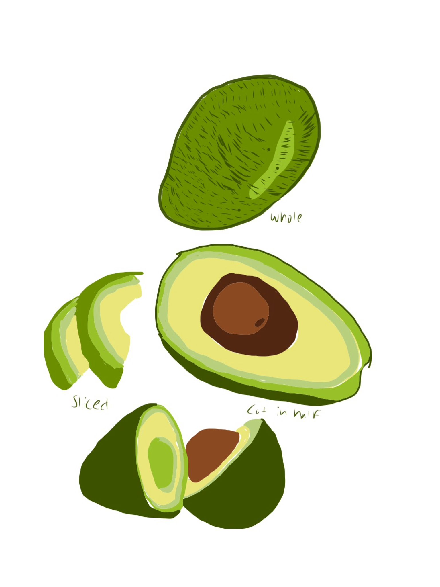 1536x2048 avocado drawing my artwork artwork, drawings, art